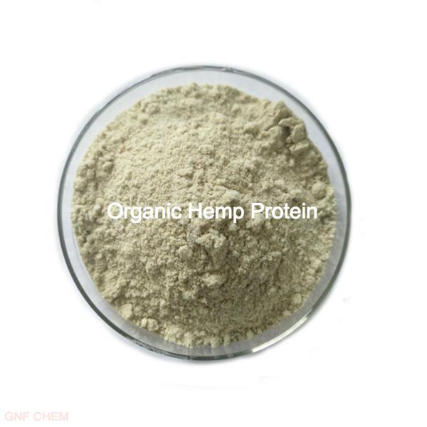 Organic Hemp Protein Featured Image